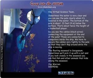 Echosounder #2 DEEPEND WhaleTimes sm